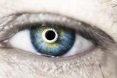 Blue eye macro — Stock Photo