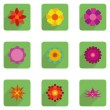 Set Of Stylish Colorful Flowers Icons Isolated — Stock Vector