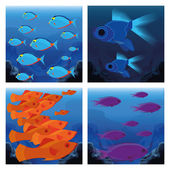 Set Of Different Scenes With Fishes — Stock Vector