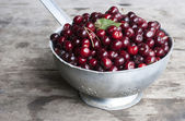 Photo of RED SWEET CHERRIES — Stock Photo