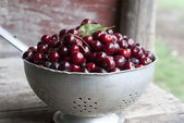 Photo of RED SWEET CHERRIES — Stockfoto