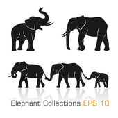 Set of black & white elephants in different poses — Vector de stock