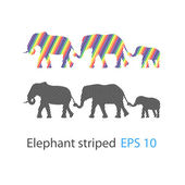 The striped elephant - Vector — Vector de stock