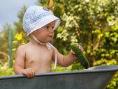 Smart toddler with cucumber in garden barrow — Stock fotografie