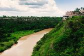 Tropical river Chavon in Dominican Republic — Stock Photo