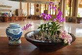 Tropik cennet otel iç — Stok fotoğraf