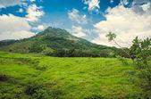 Tropical jungle mountain in Dominican Republic — Stock Photo