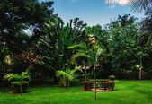 Park in  ancient village Altos de Chavon — Stock Photo