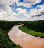 Tropická řeka chavon v dominikánské republice — Stock fotografie