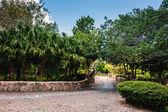 Park in  ancient village Altos de Chavon — Foto de Stock