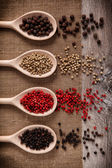Fresh black, white, pink pepper into a wooden spoons — Stock Photo