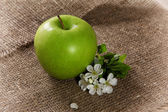 Green Apples with Leaf and Flowers — Photo