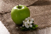 Green Apples with Leaf and Flowers — Stock Photo