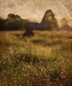 Bahar arka plan — Stok fotoğraf
