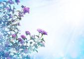 маленькие красивые розовые цветы — Стоковое фото