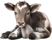 Newborn Calf — Stock Vector