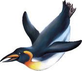 King penguin — Stock Vector