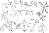 Set hand drawn vector spring floral background — Stock Vector