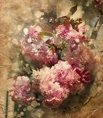 Krásná třešeň květiny — Stock fotografie