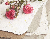 Roses and handmade paper — Stock Photo
