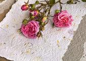 Rose e carta fatta a mano — Foto Stock