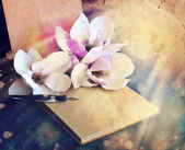 Magnolia  with album and fountain pen — Stock Photo