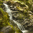 Mountain stream flows down from the mountains. — Stock Photo #46089789