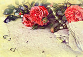 Roses, petals and handmade paper — Stock Photo