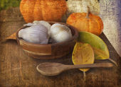 Assorted pumpkins and squashes — Stock Photo