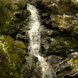 Clear mountain stream flows down — Stock Photo #51359879