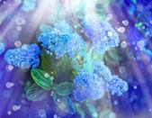 Petites fleurs bleus — Photo