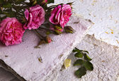 Pink roses and handmade paper — Stockfoto