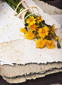 Bouquet of dandelions on handmade paper — Stock Photo