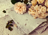 White roses and handmade paper — Stock Photo