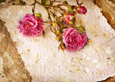 Pink roses and handmade paper — ストック写真
