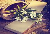 美しい白い花バスケット — ストック写真