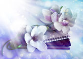 Magnolia flowers with old book — Stock Photo