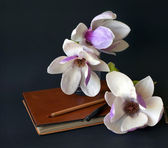 Magnolia flowers with old book and pen — Stock Photo