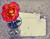 Red rose in glass vase — Foto de Stock