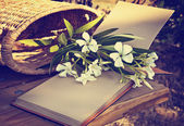 Flowers with basket — Stockfoto