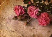 粉红玫瑰和手工纸 — 图库照片