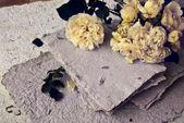Rosas brancas e papel artesanal — Fotografia Stock