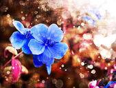 Ljust lila blommor — Stockfoto