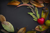 Red heart with autumn leaves — Stock Photo