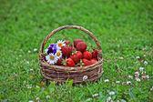 Tasty summer — Foto de Stock