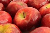Fondo de manzanas rojas — Foto de Stock