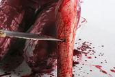 Ragazza ricoperta di sangue — Foto Stock