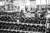 Bodybuilder exercising with dumbbells — Stock Photo