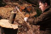 Boswachter hakken hout — Stockfoto