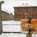 Постер, плакат: Prisoner camp